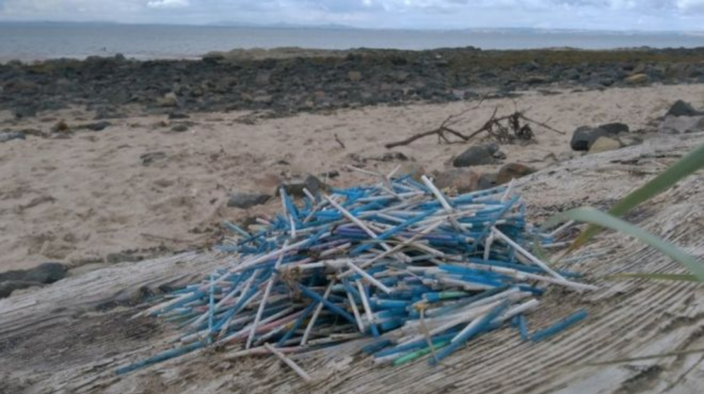 Pile of discarded cotton buds on a beach