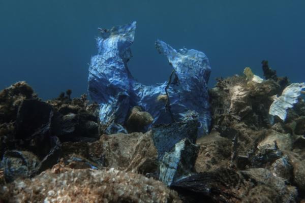 Floating plastic waste